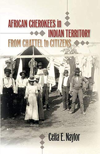 African Cherokees in Indian Territory: From Chattel to Citizens (The John Hope Franklin Series in African American History and Culture)
