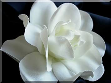 Amazon 4 hand crafted silk gardenia flower hair clip wedding 4quot hand crafted silk gardenia flower hair clip wedding off white mightylinksfo