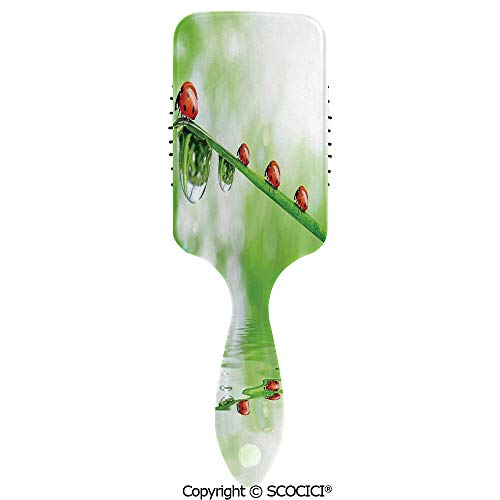 Massage Combs Premium Air Cushion Massage Scalp for Healthy Hair Ladybugs on A Stem over the Water Striped Animals Fresh Environmental Life Image Hair Brush for All Hair Types