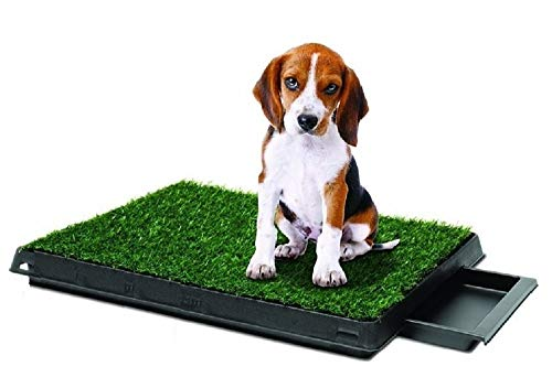 - Synturfmats Indoor Pet Potty Patch Puppy Pee Training Pad, Deluxe 3 Pieces Dog Relief System with Drawer (20