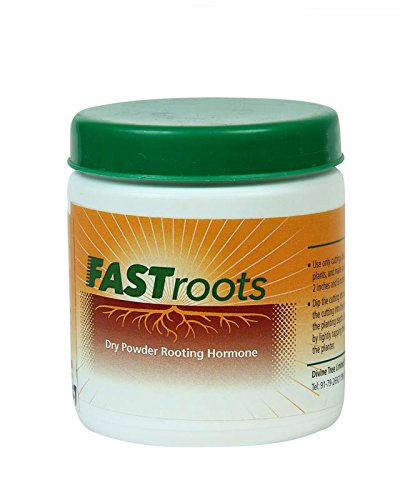 Divine Tree Fast Root Dry Powder Rooting Hormone for Plant Grow Nutrition 50 Gram