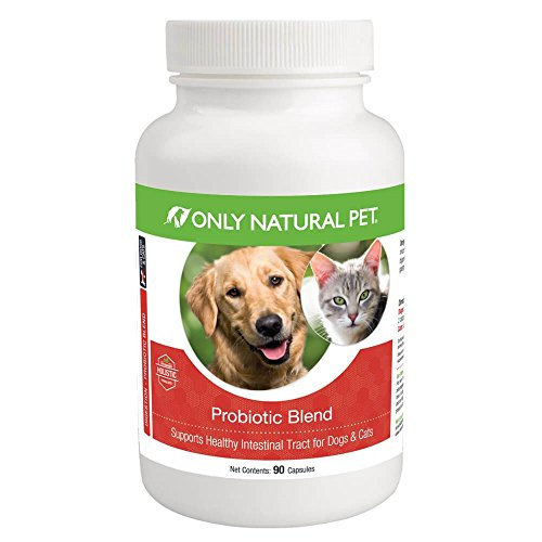 Only Natural Pet Probiotic Dog & Cat Supplement – Digestive Intestinal Tract Health Enzyme Formula – 90 Capsules