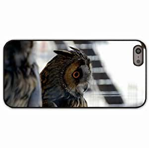 iPhone 5 5S Black Hardshell Case owl eyes feathers Desin Images Protector Back Cover