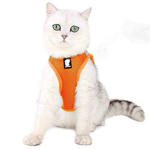 Cat Harness And Leash Set Ultra Light For Walking Escape Proof Set Adjustable Soft Mesh Step in Padded Cushioning…