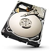 Seagate 250GB Constellation SATA 6Gb/s 64MB Cache 2.5-Inch Internal Bare Drive (ST9250610NS)