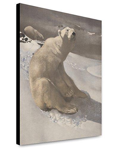 (Canvas Print 20x24: A Polar Bear Seated On Snow And Another Polar Bear Walking...)