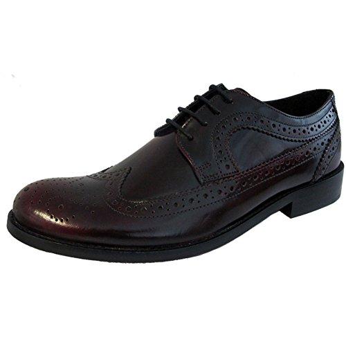 IKON Original Mens Classic Yorke Brogue Shoes Burgundy 13 US (Retro Mod Brogues)