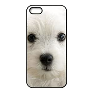 DANGDANG Cute Dog Shell Phone for iphone5s Black Cover Phone Case [Pattern-1]