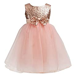 Little Girls Sequin Mesh Flower Girl Dress