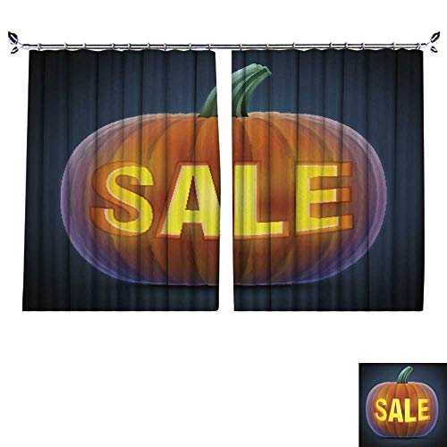 DragonBuildingMaterials Blackout Curtains Room Darkening Thermal Insulated W55 x L45(140cm x 115cm) Halloween Pumpkin with -