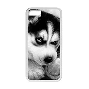 Black and White Photograph Animal Series Fashion Husky Dog Design Hot Custom Luxury Cover Case For Iphone 5C(White) with Best Plastic ALL MY DREAMS