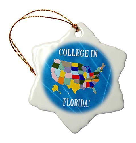 Christmas Craft Tree Decorations United States Map College In Florida Heart And Car With Luggage Snowflake Christmas Ornament Porcelain Present by Rutehiy (Image #2)