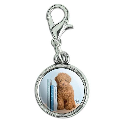 GRAPHICS & MORE Poodle Puppy Dog Book Shelf Antiqued Bracelet Pendant Zipper Pull Charm with Lobster Clasp