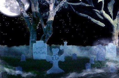 Tombstone Graveyard 22 Piece Display (Halloween Graveyard Food)