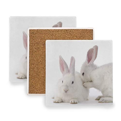 - Animal Cute White Rabbit Ceramic Coasters for Drinks,Square 4 Piece Coaster Set