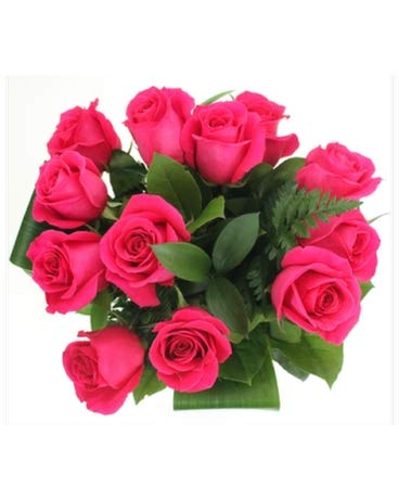 Modern Plants Live Dark Pink Rose Gulab Beautiful Flower Plant With Pot Outdoor Beautiful Decorative Flower Plant Amazon In Garden Outdoors