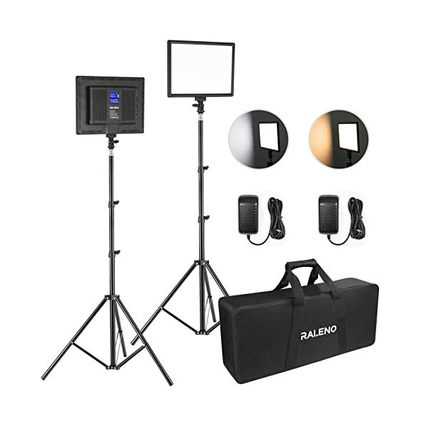 RALENO LED Video Lighting Kits With 75inch Light Stand 1 Durable Handbag And 2 Pack 384 LED Soft Video Light