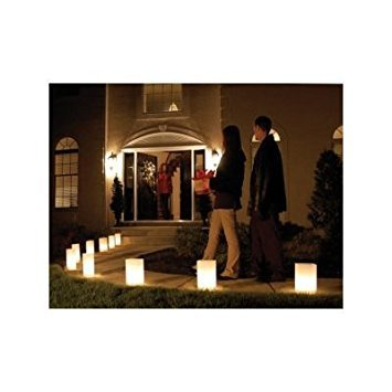 White Luminarias Electric Kit - pack of 10 by LB Inc. (Image #2)