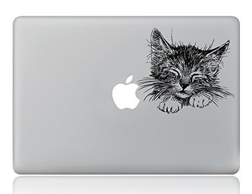 Boiling Glacier Solid Hand Painted Lovely Cat Pattern Laptop Sticker Removable Vinyl Decal Designed for Apple Macbook Air Macbook Pro 11
