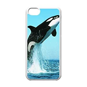 Dolphin DIY Cover Case for Iphone 5C,personalized phone case ygtg519424