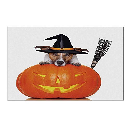 YOLIYANA Halloween Durable Door Mat,Witch Dog with a Broomstick on Large Pumpkin Fun Humorous Hilarious Animal Print for Home Office,15.7