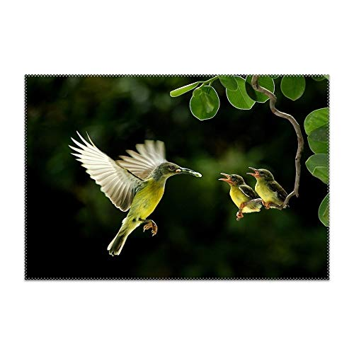 - QIFEN Placemats Heat-Resistant Anti-Skid Washable Dining Table Place Mats Kitchen Table Mats (Hummingbird Feeding Baby Birds)