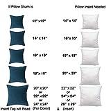 IZO All Supply 20x20 Pillow Inserts Firm & Plush