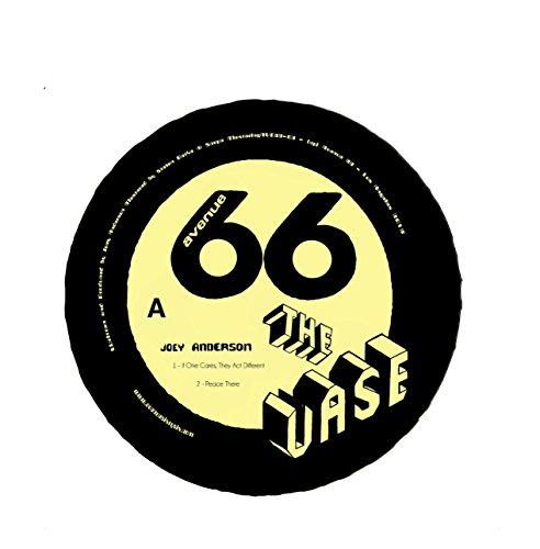 Vase (Vase Vinyl)