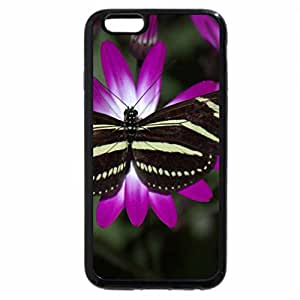 iPhone 6S Plus Case, iPhone 6 Plus Case, BLACK & YELOW BUTTERFLY