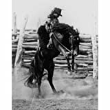Quality digital print of a vintage photograph - Bucking Bronco. Black & White 8x10 inches - Luster Finish
