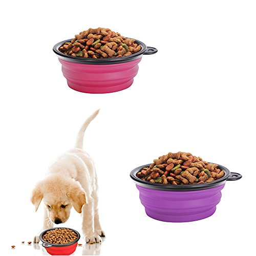Pop-up Dog Bowl & Pet Bowl - Collapsible Travel Silicone Camping Crate Dish Bowl - 2 Cup Set - Pink / Purple, Large by KIQ