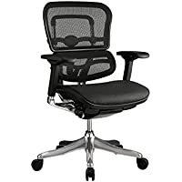 Eurotech Seating Ergo Elite ME5ERGLTLO Mid Back Chair, Black