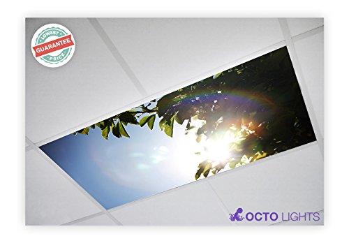 Suspended Ceiling Fluorescent Lights - 3