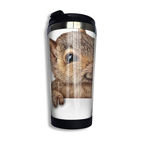 Kuyanasfk Animal Themed Cute Squirrel Stainless Steel Coffee Tumbler Travel Cup with Lid Vacuum Insulated Coffee Mug 13.5oz for Men & Women Home Office Camping from Kuyanasfk