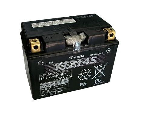 Yuasa YTZ14S bateria de moto y cargador inteligente: Amazon ...