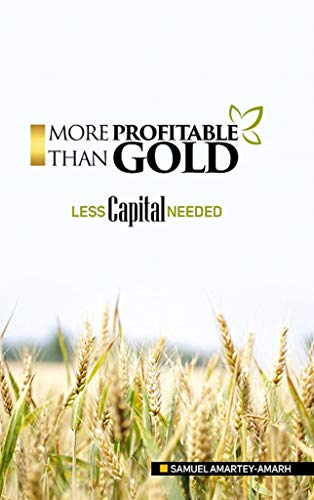 MORE PROFITABLE THAN GOLD: LESS CAPITAL NEEDED (More Than Gold)