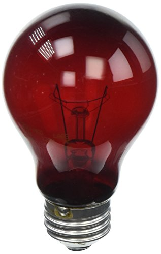 60w Red Heat Bulb - Zoo Med Nightlight Red Reptile Bulb 60 Watts (4 Pack)
