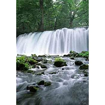 Amazon Com Waterfall Motion Moving Picture Wall Art