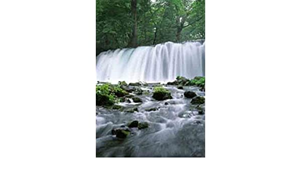 Amazon.com: Waterfall Motion Moving Picture Wall Art Lights Sounds ...