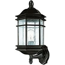 Dolan Designs 9236-68 Barlow Outdoor Wall Light, 16 3/4, Winchester