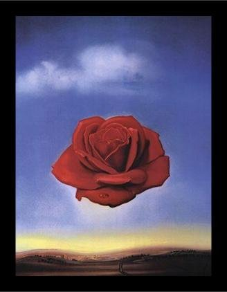 buyartforless IF HG AP792 28x22 2 Black Plexi Framed Meditative Rose C 1958 by Salvador Dali 28X22 Art Print Poster Wall Decor Museum Masterpiece Red Rose Blue Sky Famous Painting - Dali Meditative Rose