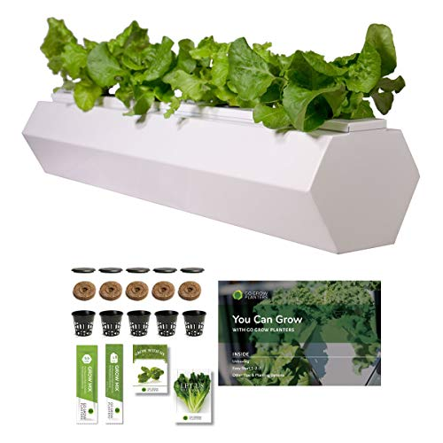 Go Grow Hydroponic Gardening Planter - Indoor/Outdoor Gardening for Non-GMO Herbs, Flowers, and Leafy Greens w/Grow Kit Hydroponic System (Hex - 5.5 Gallons, Cool -