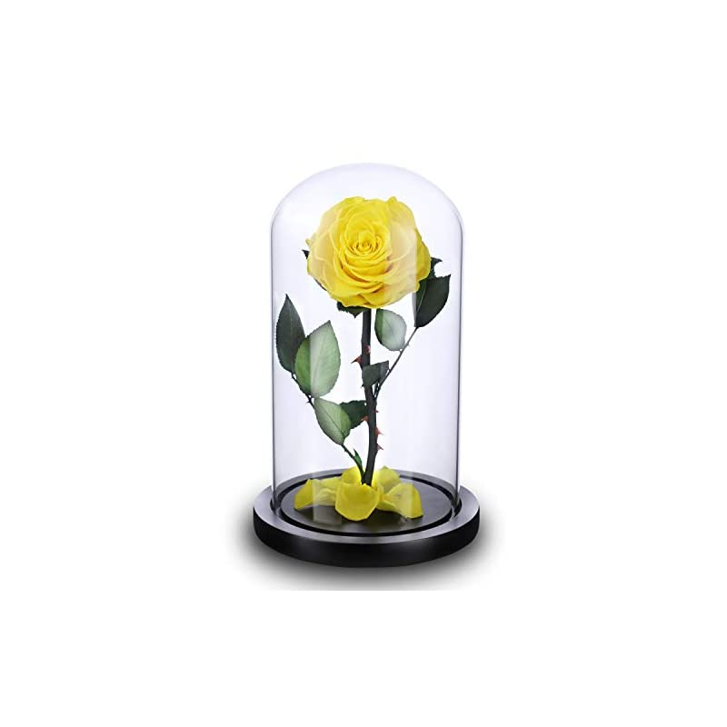 silk flower arrangements nw 1776 natural eternal magic rose eternal love ultimate beauty and the beast souvenir, (4.1 in x 9 in) wooden base and glass dome box eternal rose handmade (yellow)