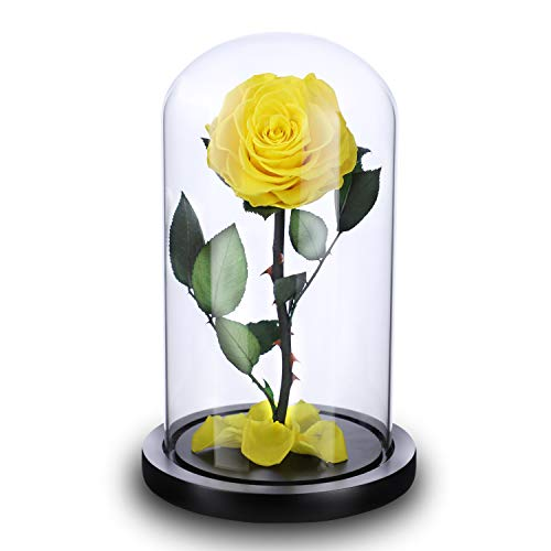 NW 1776 Handmade Flower Roses with Falling Petals Luxury Gift Box with Wooden Base and Elegant Gifts, Valentine's Day Mother's Day Anniversary