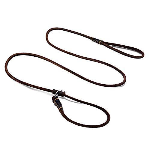 (Wellbro Rolled Real Leather Slip Dog Leash, Supper Thin and Adjustable Slip Lead, Soft and Slim, Suit for Puppies Small and Medium Dogs, 160cm Long by 0.6cm Wide, Brown)