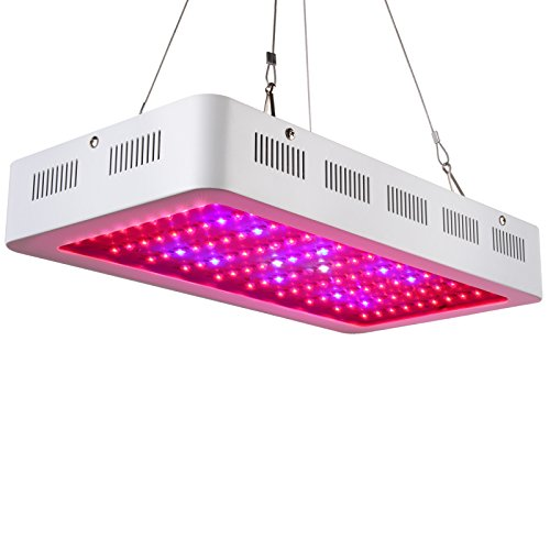 Best Led Grow Light Veg