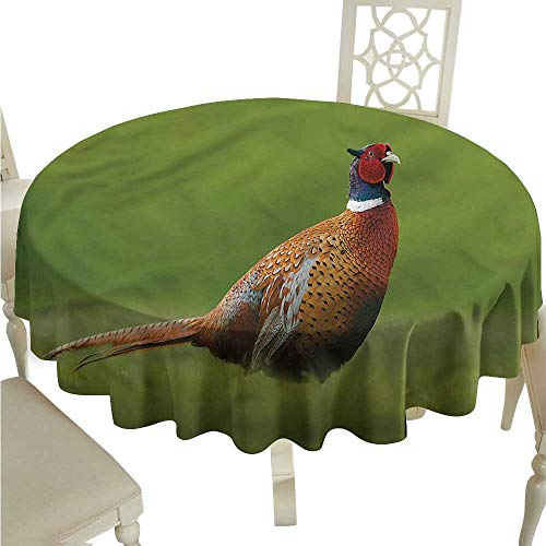 ScottDecor Printed Tablecloth Bird,Pheasant Long Tail Meadow Fabric Tablecloth Round Tablecloth D 70