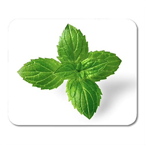 (Boszina Mouse Pads Closeup Green Leaf Fresh Peppermint Leaves White Close Food Mouse Pad for notebooks,Desktop Computers mats 9.5