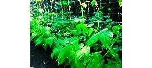 Confine Red para hortalizas Red Orto Camiseta 150x 170mm H 120cm 100metros blanco