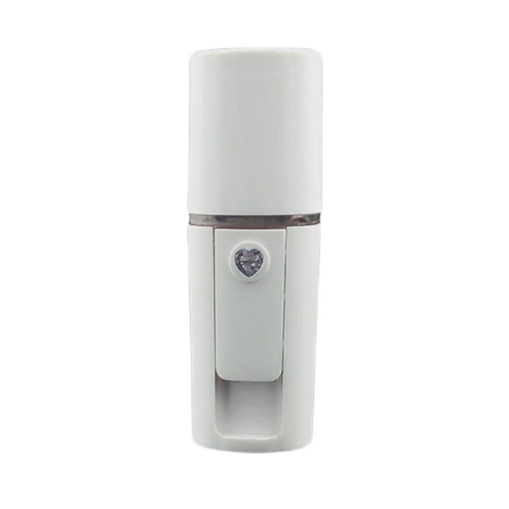 frcolor vapore per pelle Mini umidificatore Nano Handy Mist Spray Facciale